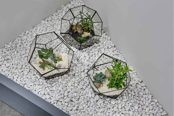 Off white stone pebbles surrounding glass ornaments filled with plants and stone