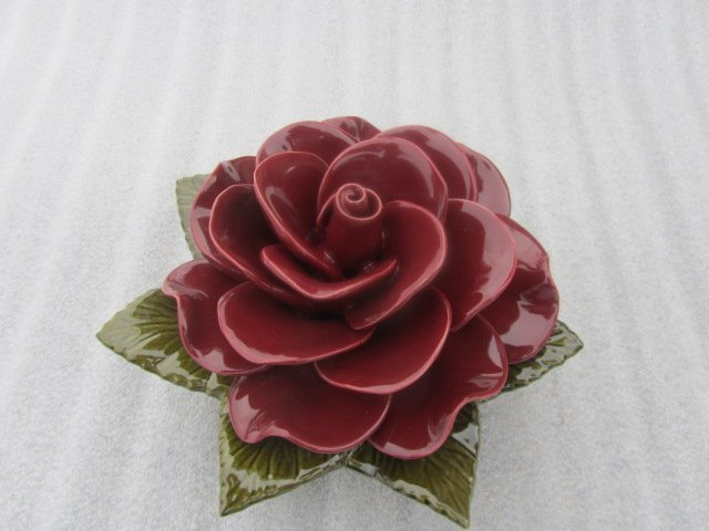 Rose Grena used for grave 20cm